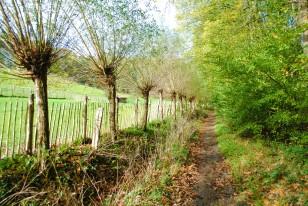 Promenade de l'Ermite 36