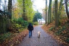 Promenade de l'Ermite (5)