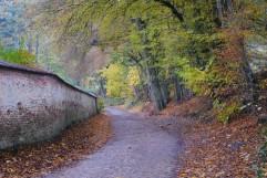 Promenade de l'Ermite (6)
