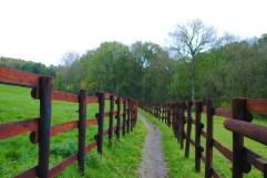 Promenade de l'Ermite (8)